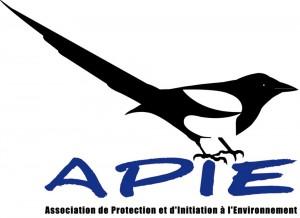 logo-APIEred