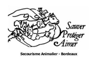 Secourisme animalier